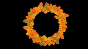 Alpha透明动画感恩节快乐日排版设计花环模板 树叶背景 向量例证