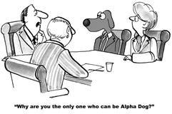 Alpha Dog Foto de archivo libre de regalías