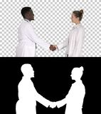 Nice to meet you Doctors meet and shake hands, Alpha Channel stock image