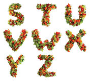 Alphabet. Letters of the alphabet S through Z made from lettuce, tomato, carrot, yellow pepper and cucumber. Isolated on a white background stock image