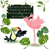 Alphabet. ABC, tropical bird, flowers. Cute kids vector illustration. Funny cartoon birds flamingo, toucan. Alphabet design in a pink style Royalty Free Illustration