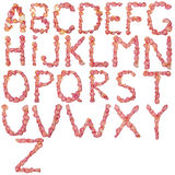 Alphabet anglais en entier fait de pétale de rose rose Image libre de droits