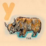 Alphabet anglais, yak Photographie stock