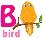Alphabet animal B illustration stock