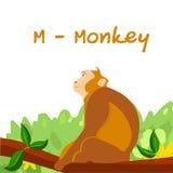 Alphabet animal d'isolement pour les enfants, M pour le singe Photos stock