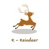 Alphabet animal d'isolement pour les enfants, R pour le renne Photos libres de droits