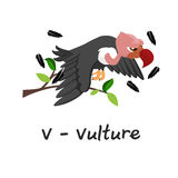 Alphabet animal d'isolement pour les enfants, V pour le vautour Image libre de droits