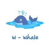 Alphabet animal d'isolement pour les enfants, W pour la baleine Photo libre de droits