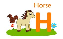 alphabet animal h letter 马的H 免版税库存图片