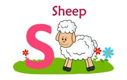 alphabet animal letter s S για τα πρόβατα Στοκ Εικόνα