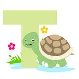 alphabet animal letter t 免版税库存图片