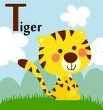 Alphabet animal pour les enfants : T pour le tigre Photos libres de droits