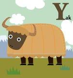 Alphabet animal pour les enfants : Y pour les yaks Images libres de droits