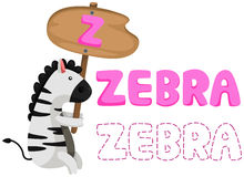 Alphabet animal z avec le zèbre Image stock