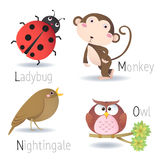 Alphabet with animals from L to O Stock Images