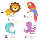 Alphabet with animals from L to O Set 2 Stock Images