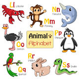 Alphabet animals from L to S Royalty Free Stock Image