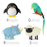 Alphabet with animals from P to S Set 2 Stock Images