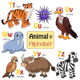 Alphabet animals from T to Z Royalty Free Stock Images