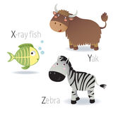 Alphabet with animals from X to Z Royalty Free Stock Photo