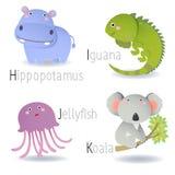 Alphabet avec des animaux de H à K Photographie stock