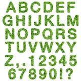 Alphabet avec des nombres faits à partir des feuilles de vert d'isolement sur le fond blanc 3d rendent Images stock