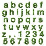 Alphabet avec des nombres faits à partir des feuilles de vert d'isolement sur le fond blanc 3d rendent Photos libres de droits