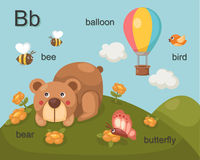 Alphabet.B. Letter bee bear balloon bird butterfly Stock Images