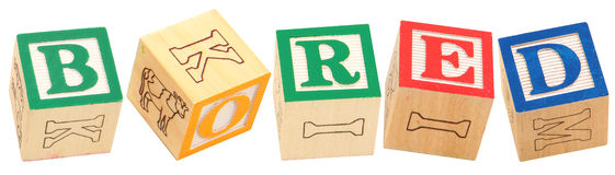 Alphabet Blocks BORED Stock Photo
