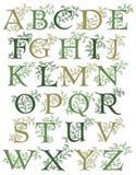 Alphabet botanique Photos stock