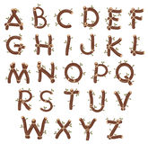 Alphabet with branches and leaves. Royalty Free Stock Photos