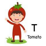 Alphabet-Buchstabec$t-tomate, Vektor Stockbild