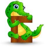 Alphabet C avec la bande dessinée de crocodile Photographie stock libre de droits