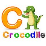Alphabet C avec la bande dessinée de crocodile Images stock