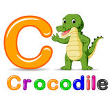 Alphabet C with Crocodile cartoon Stock Images
