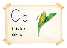 Alphabet C Stock Photos