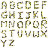 Alphabet from capsules Royalty Free Stock Images