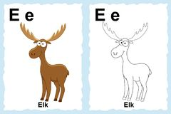 Alphabet coloring book page with outline clip art to color. Letter E. Elk. Vector animals. royalty free illustration