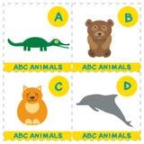 Alphabet d'ABC pour des enfants Ensemble de caractère drôle d'animaux de bande dessinée de dauphin de chat d'ours d'alligator Car Image libre de droits