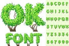 Alphabet d'arbre d'été Photographie stock libre de droits