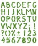 Alphabet d'arbre de sapin Photos stock