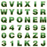 Alphabet d'or avec le vert Image stock