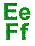 Alphabet d'herbe verte Image stock