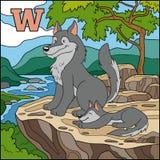 Alphabet de couleur pour des enfants : lettre W (loup) Image libre de droits