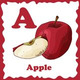 Alphabet de fruit de vecteur pour l'éducation Illustration pour des gosses Marquez avec des lettres A pour Apple Photos libres de droits