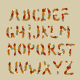 Alphabet de latin d'automne Image libre de droits