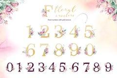 Alphabet de lettre de scintillement d'or Polices alphabétiques d'or d'isolement et nombres sur le fond blanc Texte l'épousant flo illustration de vecteur