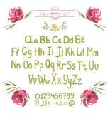 Alphabet de vecteur Lettres et fleurs vertes tirées par la main Photographie stock