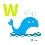 Alphabet de zoo de lettre ABC anglais avec des cartes d'éducation d'animaux pour la conception plate de fond blanc d'enfants Image libre de droits