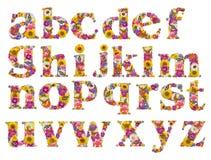 Alphabet der Blumen lizenzfreie stockfotos